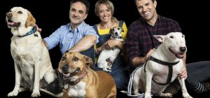 Animal Rescue Live: Supervet Special